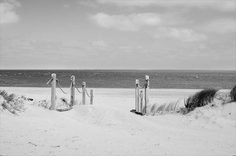 strandpaaltjes