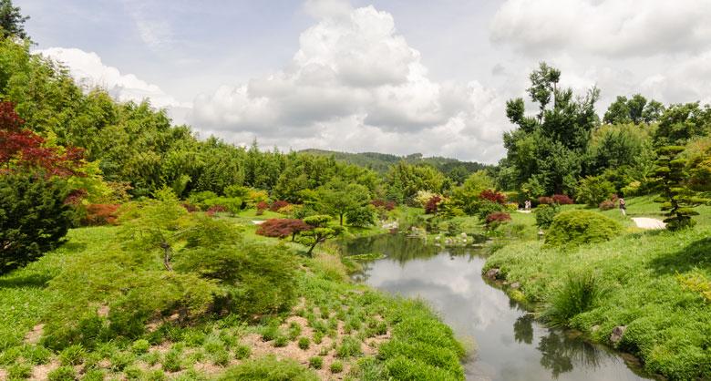 panorama-bamboiserie